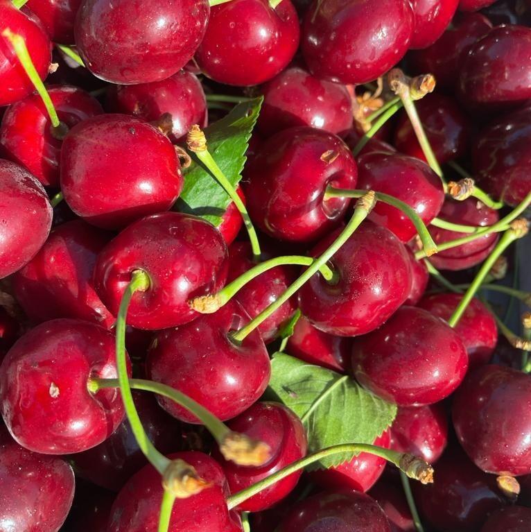 Cherries macknade